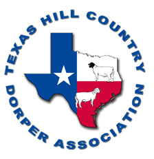 Texas Hill Country Dorper Show and Sale
